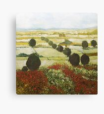 Wildflower Valley Canvas Print