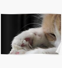 """""""Pink Jellybean Paws"""" Poster"""