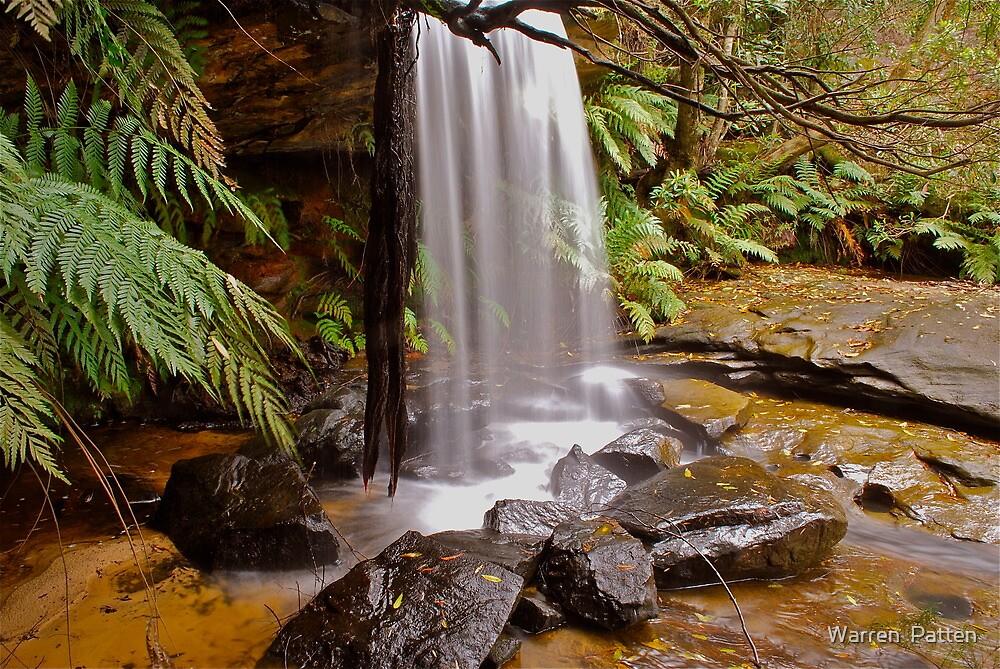 Girrakool,10-10-2010 NSW AUSTRALIA..no3 by Warren  Patten