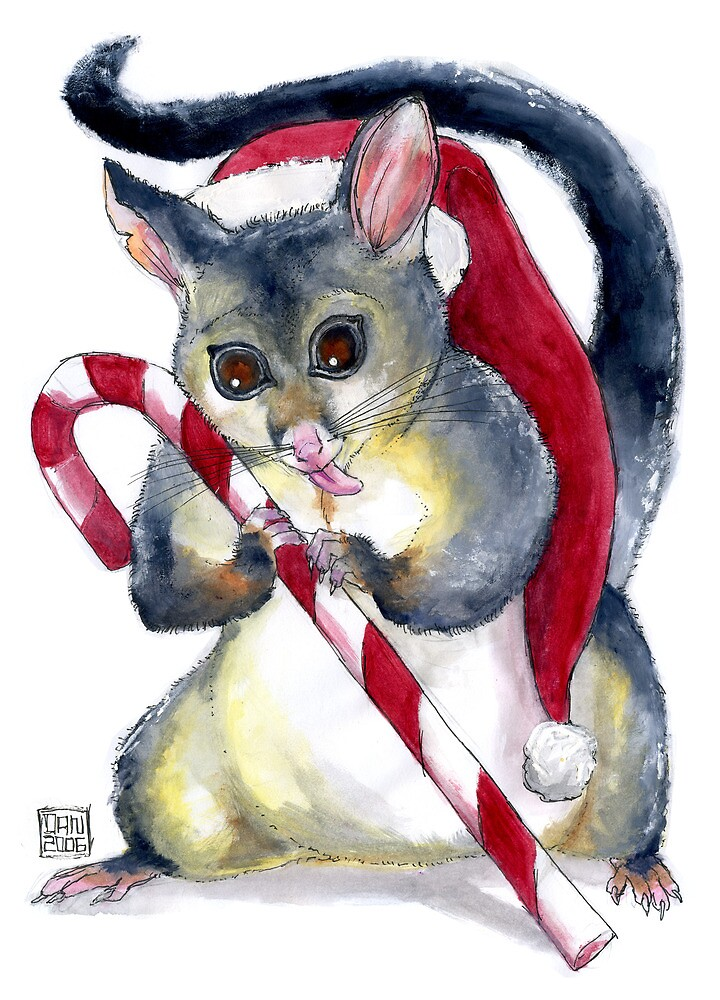 Possum & Candy Cane Christmas Card by Dan Monceaux