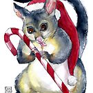 Possum & Candy Cane Christmas Card by Dan & Emma Monceaux