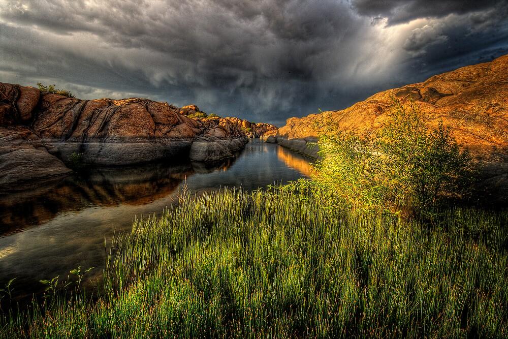 Grasslight by Bob Larson