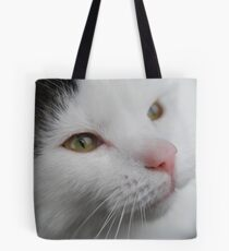 feline friends and his names sploge.. Tote Bag