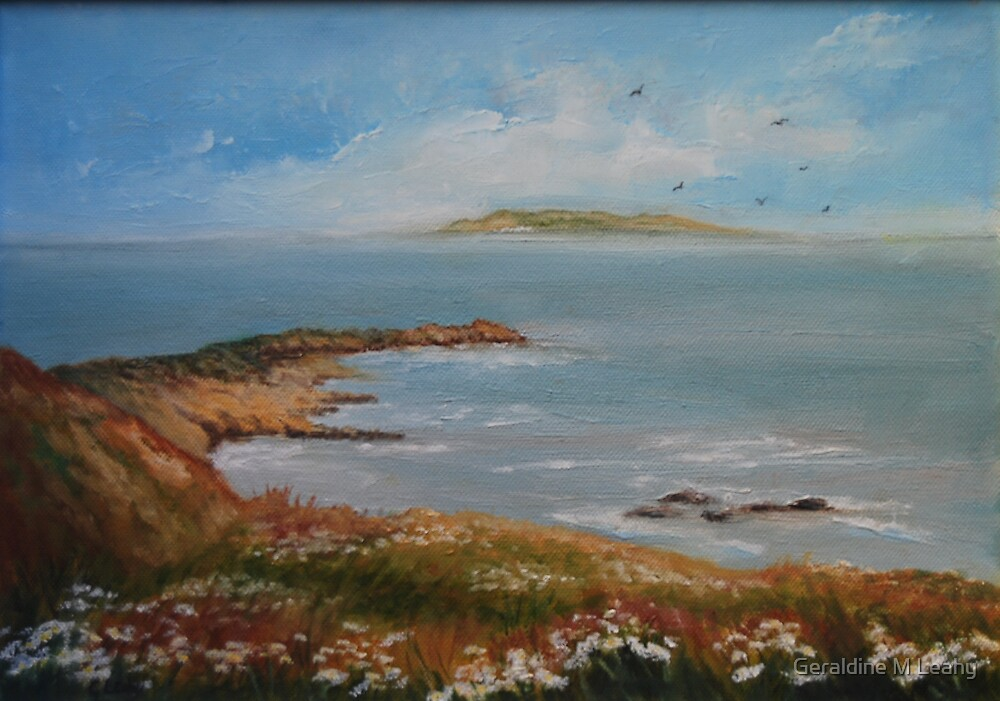 View of Lambay Island by Geraldine M Leahy