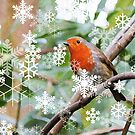 Season's Greetings! by Mike Paget