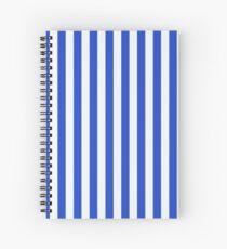 Cuaderno de espiral Royal Blue Combination Stripes