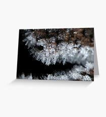 Rime Frost Macro Greeting Card