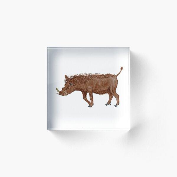 Copy of Warthog Acrylic Block