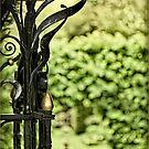 Secret Garden by Peter Howes