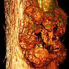 Ogre Tree by Chelei