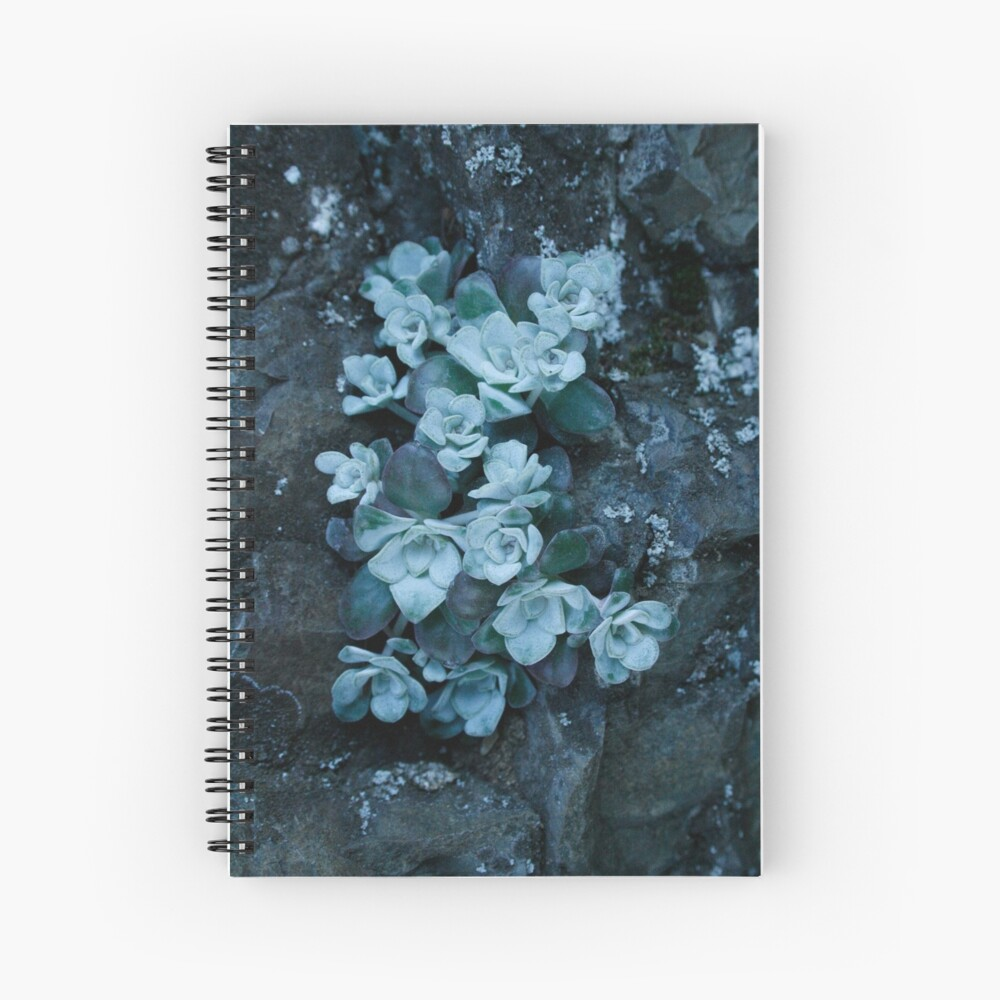 cool blue wild succulents Spiral Notebook