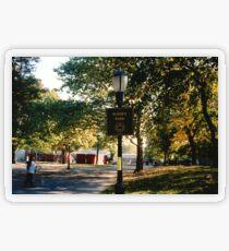 Sunset Park Transparent Sticker