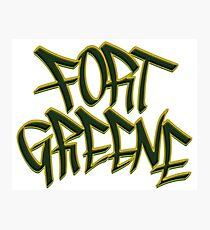 Fort Greene Photographic Print
