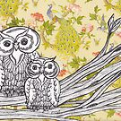 Owls and Peacocks by kewzoo