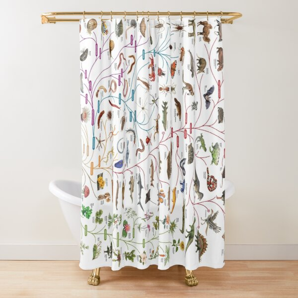 Tree of Animal Life - Evolution is change in the heritable characteristics of biological populations over successive generations Shower Curtain