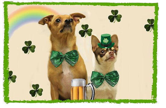 St. Patrick's Day Chihuahuas by ritmoboxers