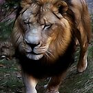 Gentle beast by Ted Petrovits
