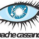 Apache Cassandra by Apache Community Development