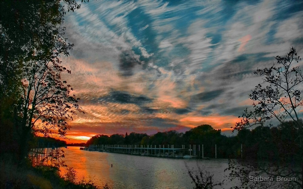 Sacramento Skies by Barbara  Brown