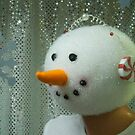 Snowman Rock by Michael J. Cargill