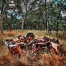 Wakooka Wreck by Luke Griffin
