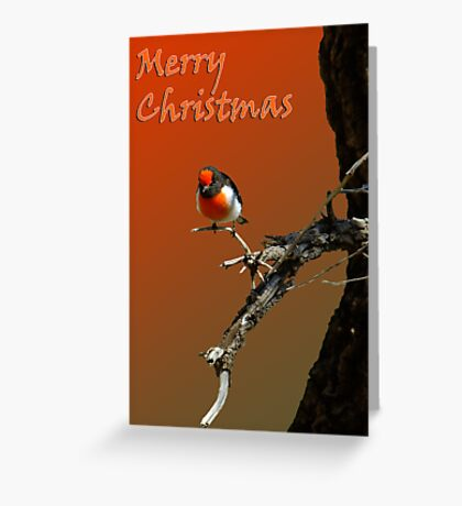 Merry Christmas Red Robin Greeting Card
