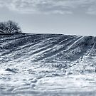 A journey into the cold by rosiephoto