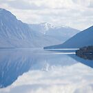 reflection by youngkinderhook