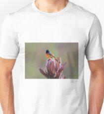 Orange- breasted Sunbird T-Shirt