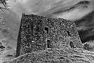 Lydford castle,  Dartmoor, Devon, UK  by David Carton