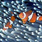 Clownfish by Melissa Fiene