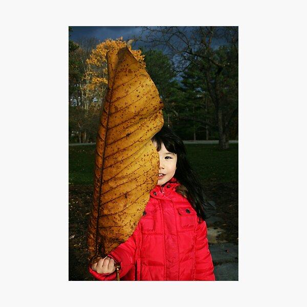 The Big Leaf Photographic Print