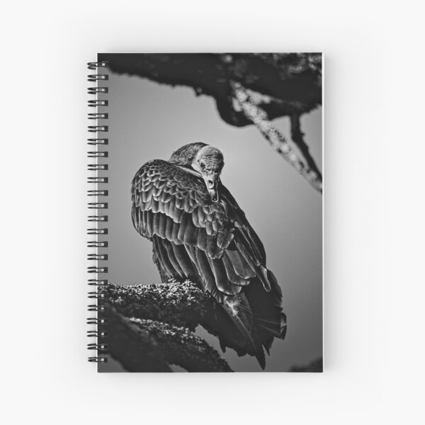 Pretty Bird. Spiral Notebook