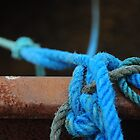Blue ropes by Karin  Funke