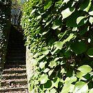 Secret garden by bubblehex08