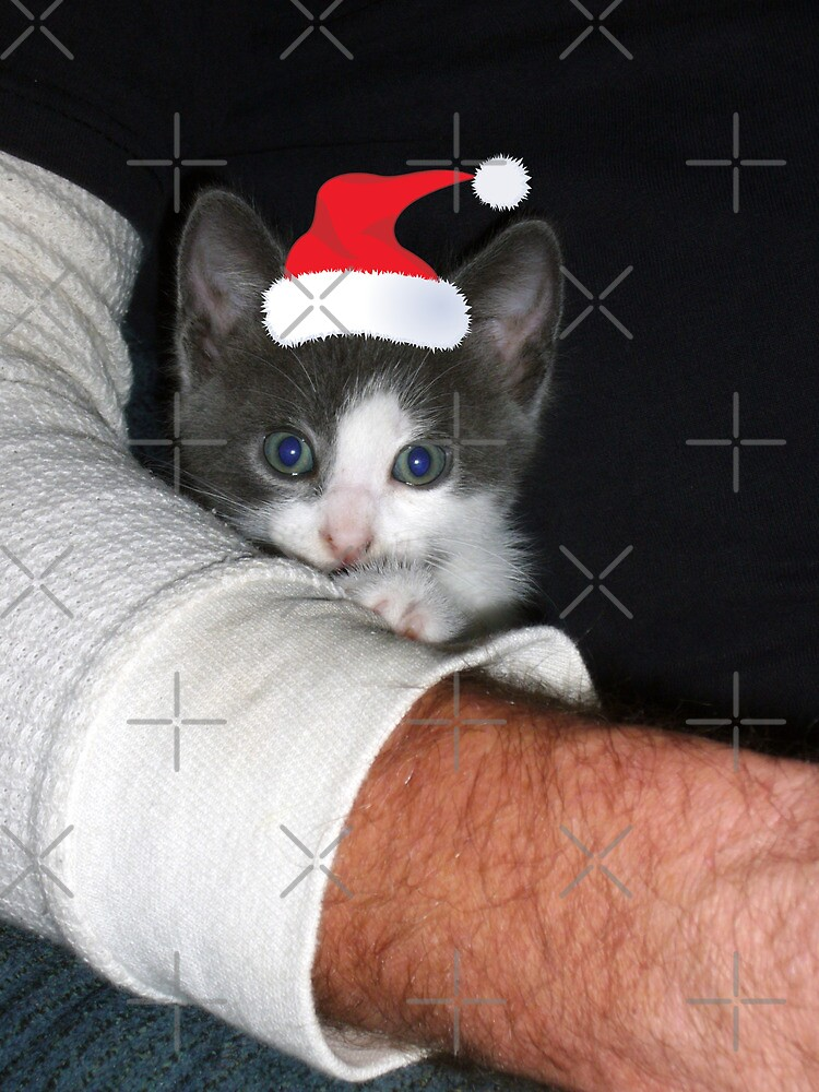 Santa's Little Helper by FrankieCat