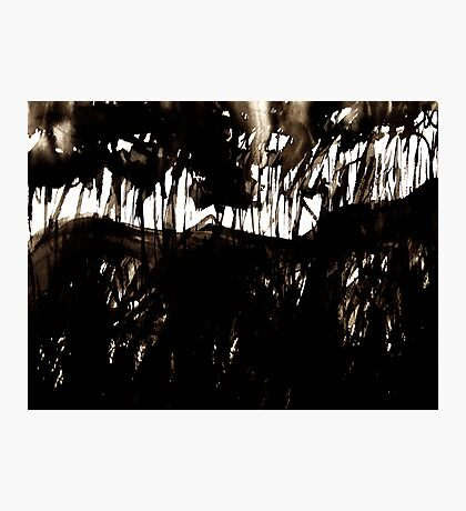 fuji.... through a black forest Photographic Print