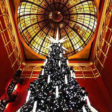 Queen Victoria Building(QVB) at Christmas Time by gatekeeper