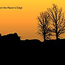 Living on the Razor's Edge by DigitallyStill