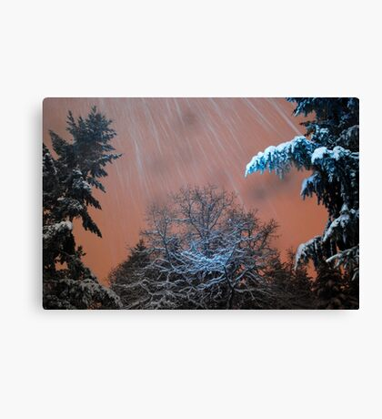 Snow Squall Canvas Print