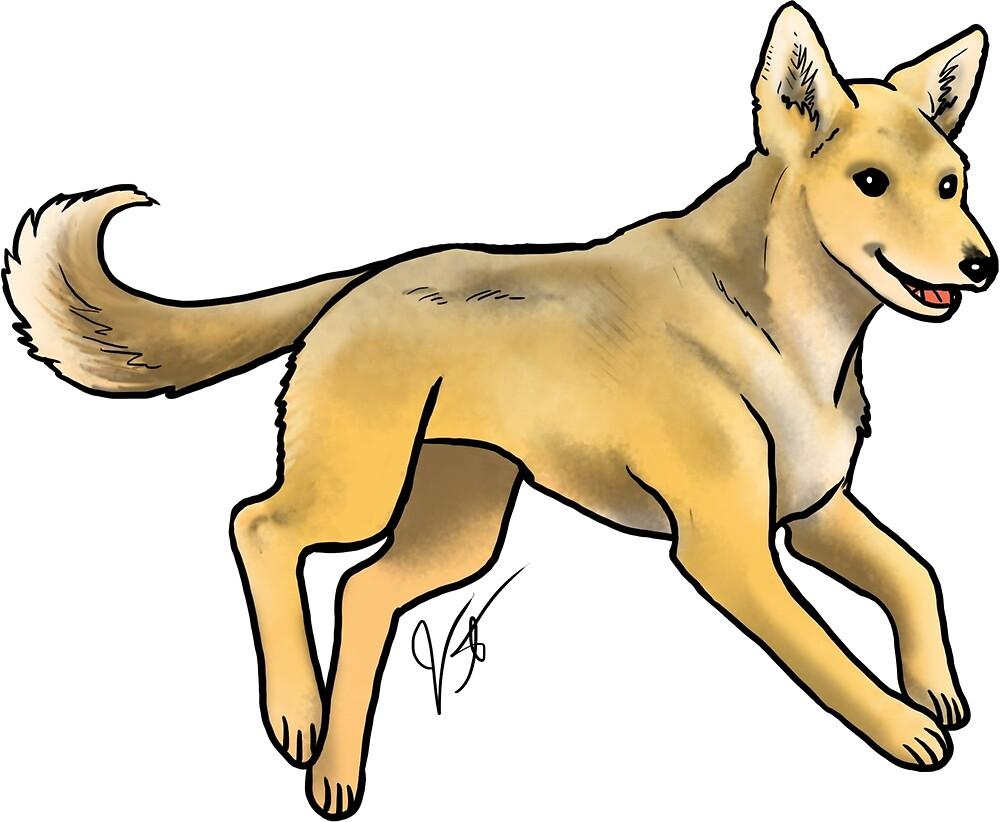 Carolina Dog by Jennifer Stolzer