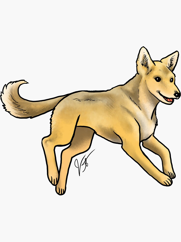 Carolina Dog by jameson9101322