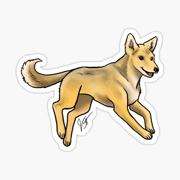 Carolina Dog Sticker
