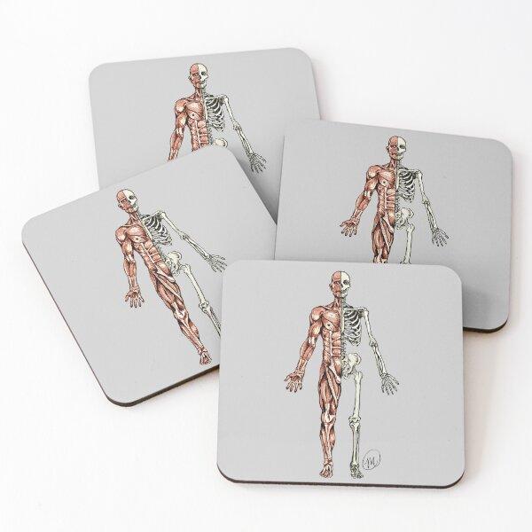 Half Muscle - Half Skeleton Coasters (Set of 4)