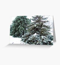 Winter's Blanket © Greeting Card