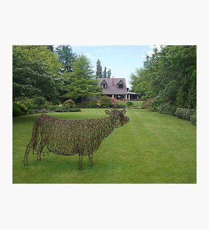garden sculpture, Flaxmere Garden, New Zealand Photographic Print