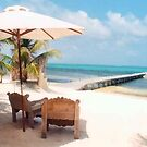 Beach Resorts Belize by Black Orchid Resort