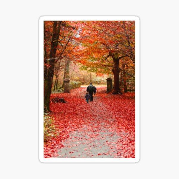 Coole Park Autumn 1 Sticker