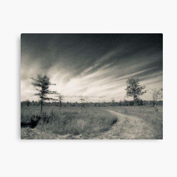 Irwin Prairie State Nature Preserve Photograph Canvas Print