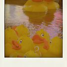 Hook a Duck a roid by Olly  Pirozek